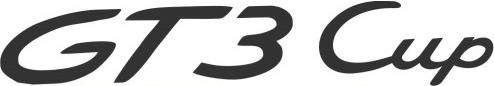 GT3 Renntaxi
